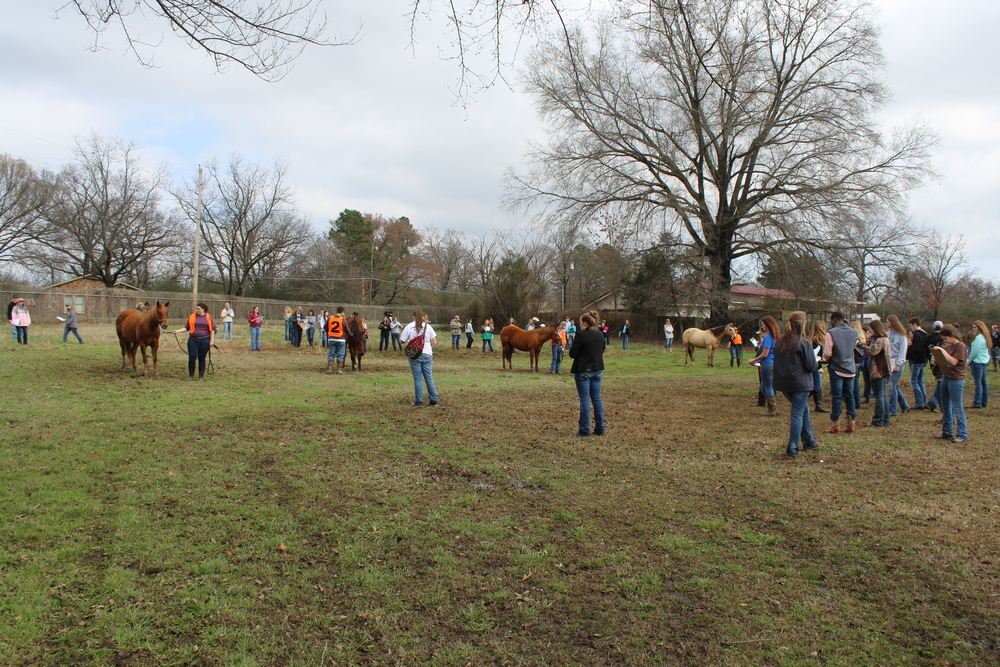 Annual Logan County Field Day