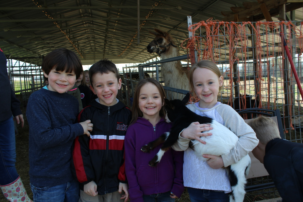 Kindergarten Trip - Bacchus Family Farms