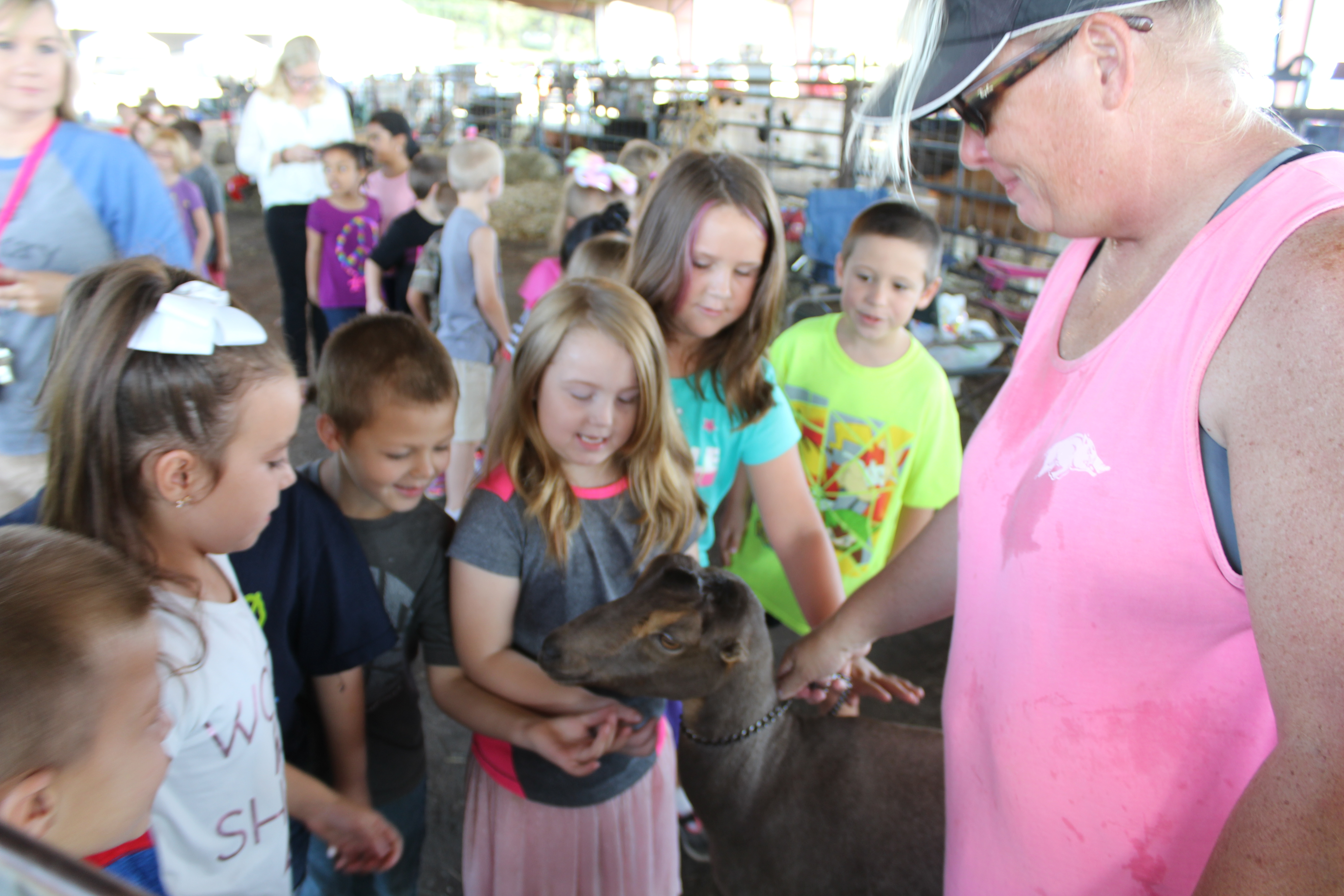 PES Visits the County Fair